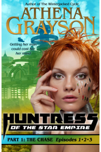The Chase (Huntress Bundle #1)